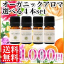 Organic aromatherapy oils sampler set of 4 essential oils, each 3 ml | Essential oils