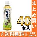 500 ml of 24 *2 healthy tea-buckwheat noodles tea pet Motoiri bulk buying [だったん 蕎麦茶韃靼 side tea] where Ito En, Ltd. is fragrant
