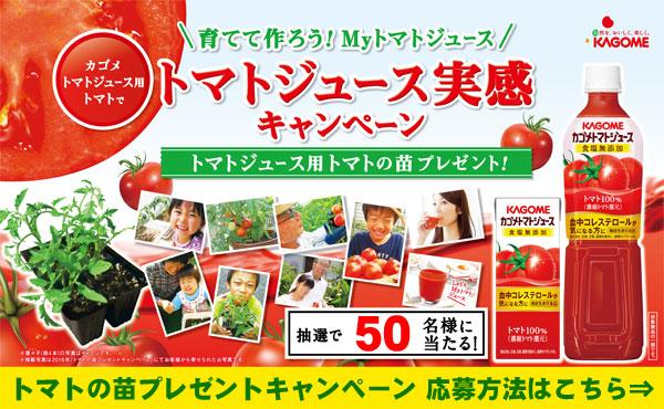 カゴメ トマトの苗プレゼントCP