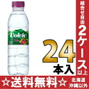 500 ml of 24 giraffe Volvic (volvic) French cassis pet Motoiri [flavor water regular import goods]