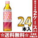 500 ml of 24 tea HAPPINESS! peach & raspberry pet Motoiri [afternoon tea rah-rah bird tea] of the giraffe afternoon