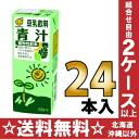 24 200 ml of Marusan soy milk green soup pack Motoiri []