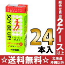 24 200 ml of Marusan soy milk soy B up pack Motoiri [SOY BE improves; is]