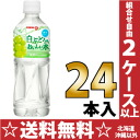 Pokka white grape smells delicious water 500 ml pet 24-pieces [stand POKKA pure water フレーバーウォーター white grape.