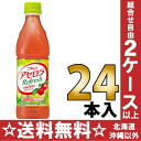 Nichirei Sun Acerola 470 ml pet 24 pieces [days clean あせろ et al.