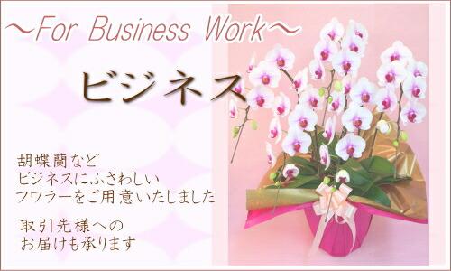 ビジネスシーンに適したお花