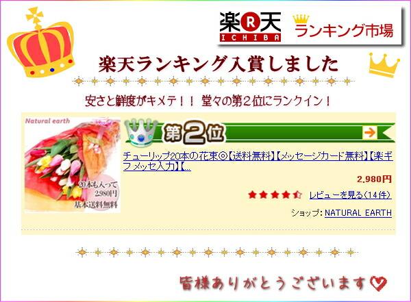 チューリップの花束楽天ランキング入賞