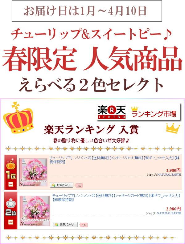 楽天ランキング入賞 チューリップアレンジメント