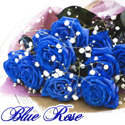 青い薔薇ブルーローズ10本の花束
