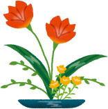 生け花の水にみょうばん水