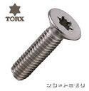 Stainless steel Torx Sara Cap M6×30