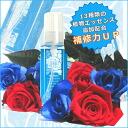 ビューティシモ ブルーローゼス essence rich hair treatment / 100 mL