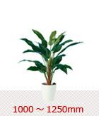 1000〜1250mm