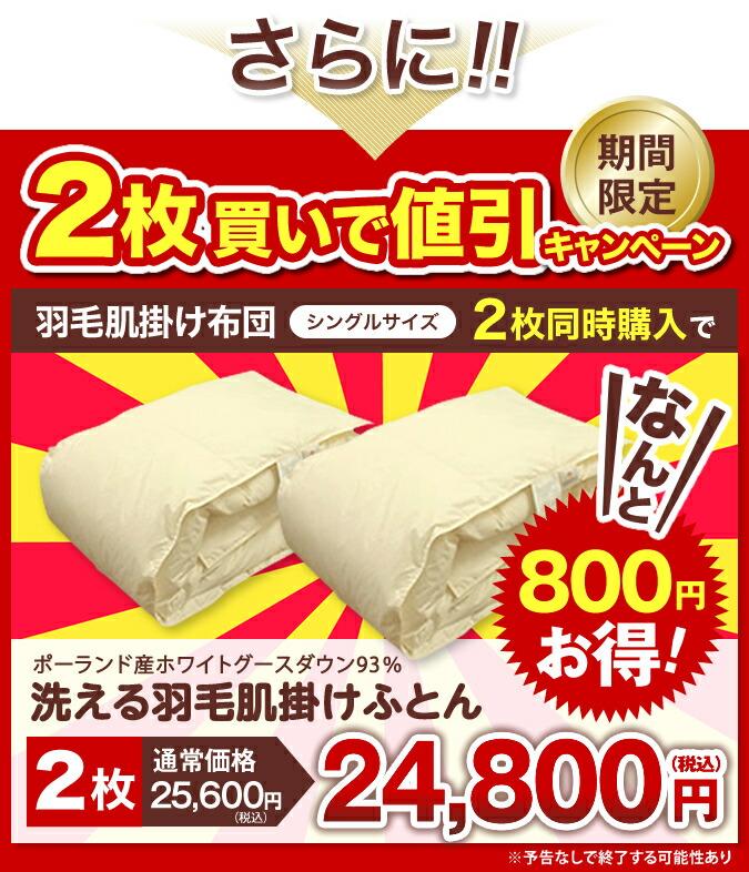 2枚セットが今だけ800円引きの24800円
