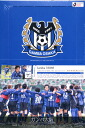 Sale ■ ■ 2008 J League Team Edition memorabilia Gamba Osaka