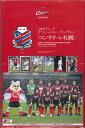 Sale ■ ■ 2009 J リーグオフィシャルトレーディング card consadole Sapporo