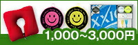 1,000〜3,000円