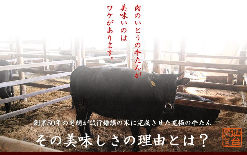 肉のいとうの牛たんの美味しさには理由があります