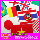 ・Four pieces of sets (delivery) which can choose 1,000 yen national flag emblem (S)