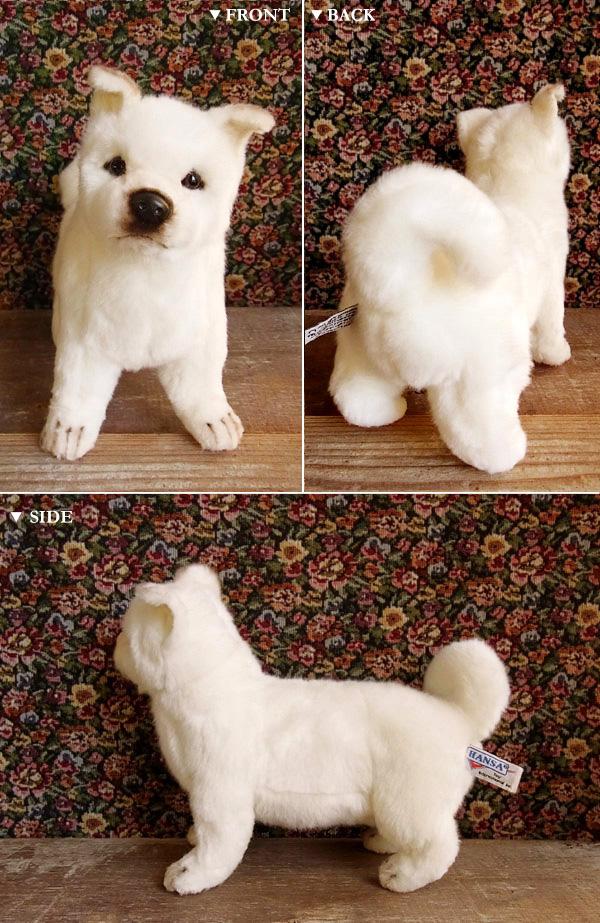 犬 ぬいぐるみ 北海道犬 リアル