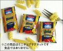 Miniature magnet pasta AGNESI
