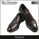 Allen Edmonds Allen Edmonds strand wingtip shoes STRAND 6105 calfleather E wise men