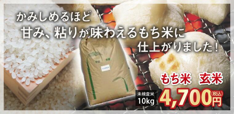 もち米玄米
