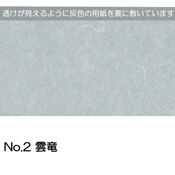 No.2雲竜