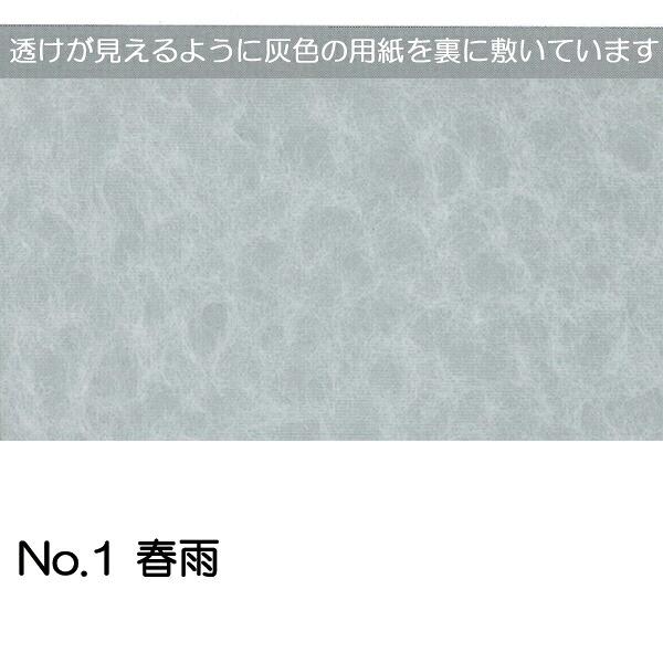 No.1春雨