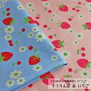 YUWA シャーティング cherry & strawberry / cloth cloth strawberry cherry fruit