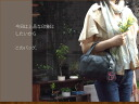 Handbag cowhide real leather casual four Mulready's o-sho where software handbag / エスティーヌミニバッグバッグレディース which is クラシカルエレガント is light going out