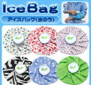 Ice pack iceberg cooling bag pad capacity 1000 ml