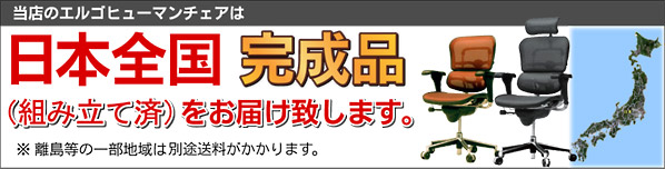 「WORKAHOLIC」はエルゴヒューマンチェア日本全国完成品をお届け!