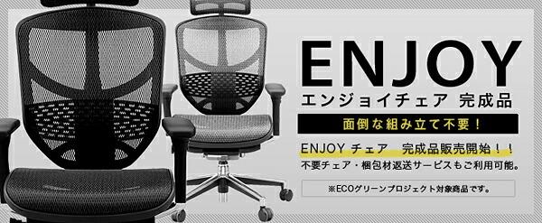 エルゴヒューマン ENJOY〜エンジョイ 完成品