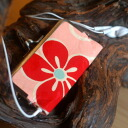 Old cloth iPod nano case