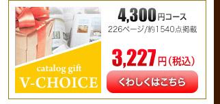 Vチョイス4100円コース