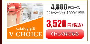 Vチョイス4600円コース