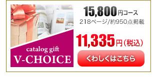 Vチョイス15600円コース
