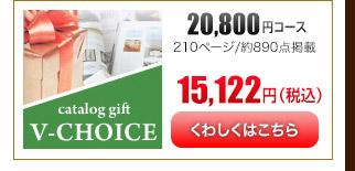 Vチョイス20600円コース