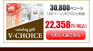 Vチョイス30600円コース