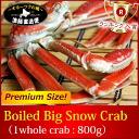 Kani_snowcrab800-