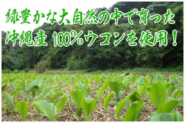 沖縄産100%ウコン