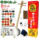 Kankara sanshin (shamisen) homemade Kit B