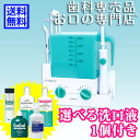 , ★ can choose gift ★ Conair Interplak dental water jet WJ6R