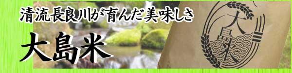 岐阜県産コシヒカリ 大島米