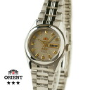 Orient South America model ladies automatic winding grey TNQ1P003K