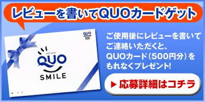 QUOカードプレゼントキャンペーン詳細