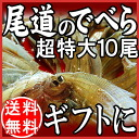 Dried food Gifts Gift 2014 dried set present ranking and in the op's ( out flat and flounder in vira ), Super extra large size 10 tail rope fish set domestic TV Onomichi specialty products souvenir gift 内祝i celebration 快気祝i