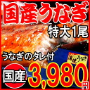 One eel kabayaki charcoal fire firing eel kabayaki outsize (one of them:) The eel dog days day of the Ox with the sauce of the ※ eel kabayaki which about 190 g - around 200 g) Miyazaki product is necessary for ※ postage 900 yen from Kagoshima