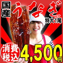 ★One ★ eel kabayaki charcoal fire firing eel kabayaki outsize (one of them:) at half price for 73 hours by the limited ★ coupon use By about 230 g - around 250 g) Miyazaki product, five bundling from Kagoshima! ※The eel dog days day of the Ox with the sa